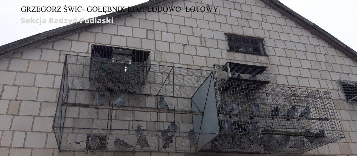 Świć Grzegorz - Sekcja Radzyń Podlaski